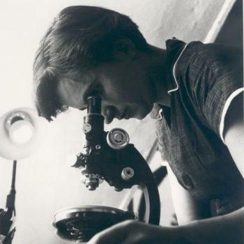 ¿Cuáles fueron las implicaciones del descubrimiento del ADN?